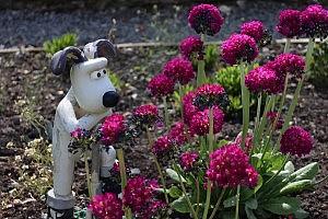 Garden Gromit